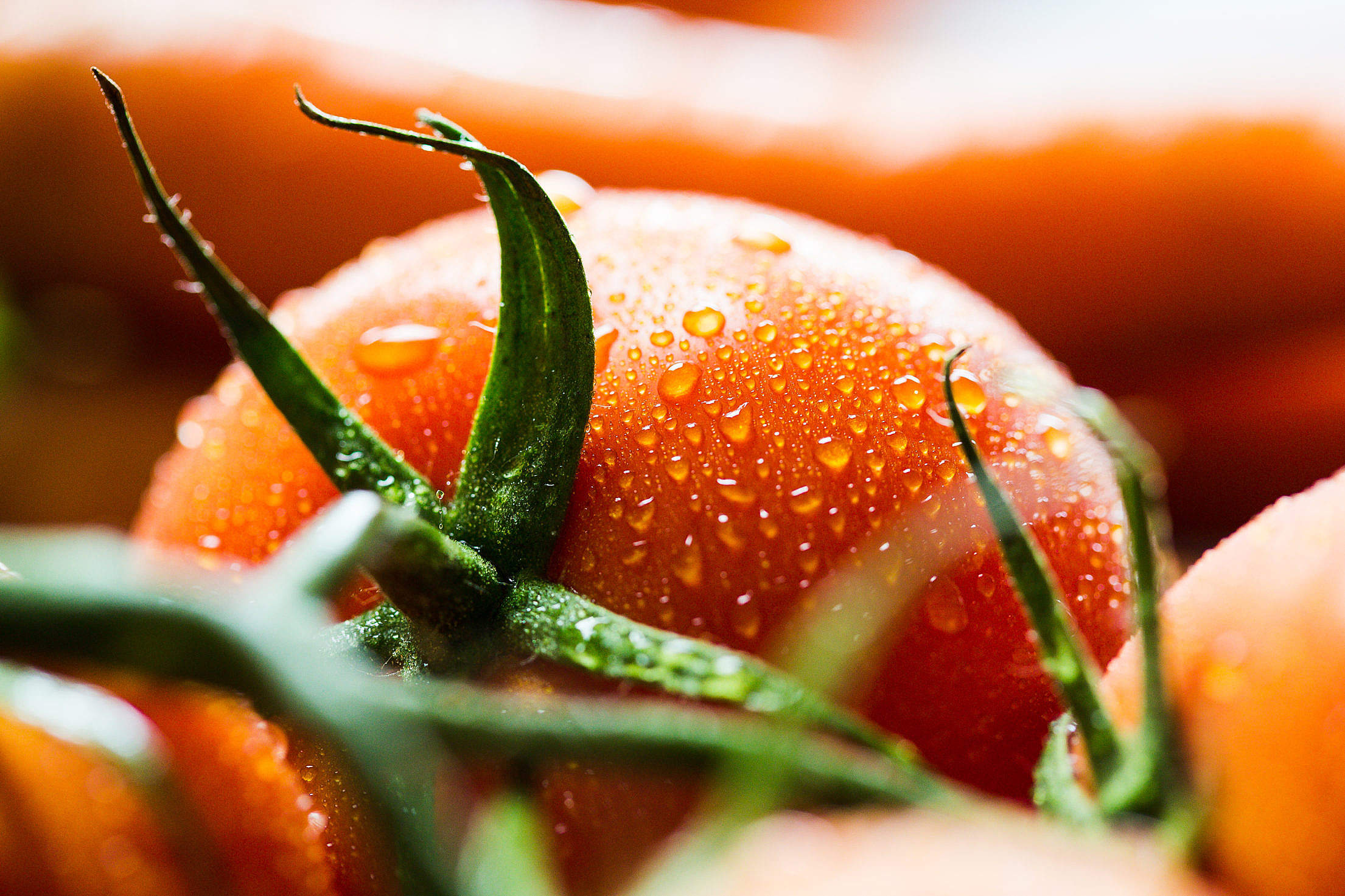 La sostenibilidad marca el ritmo en las innovaciones de alimentos y bebidas